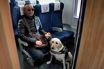 导盲犬坐高铁