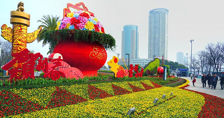 宁波花坛景观姹紫嫣红 迎新春氛围浓