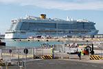 日本邮轮确诊病例增至20人