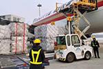 温州将包机从海外运输防疫物资