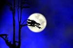 全国元宵节赏月地图来了 快来pick居家赏月攻略