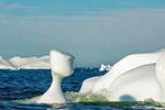 格陵兰拟向商业公司出售融化的雪水