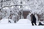 美国17州发布暴雪警报