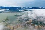 国务院:免征湖北小规模纳税人增值税3个月 其他地区降至1%
