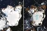 南极鹰岛约20%积雪融化