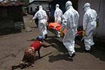 尼日利亚拉沙热致103人死亡