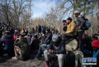 土耳其称8万多名非法移民越境进入欧洲