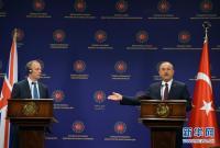 土耳其与英国讨论伊德利卜军事行动及难民问题