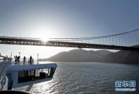 """发生新冠疫情的""""至尊公主""""号邮轮将停靠旧金山湾区"""