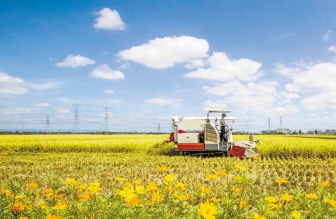 农业机械化助推农业丰收