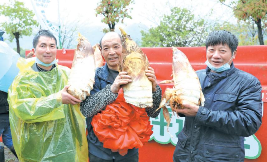 横溪镇首届笋文化节开幕