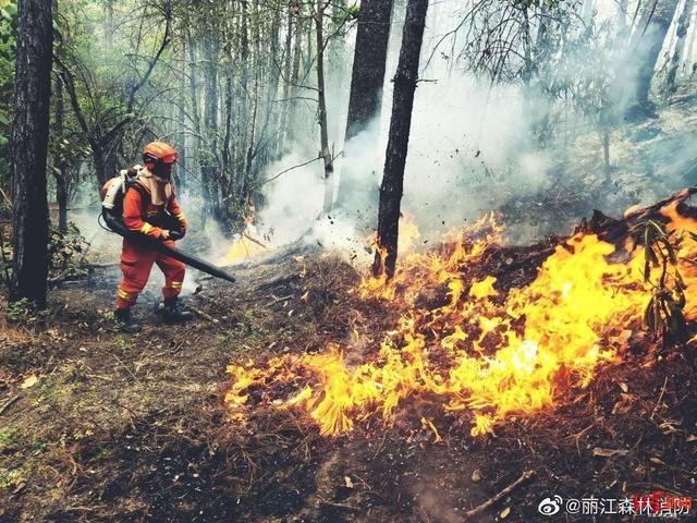 云南丽江森林火灾明火已扑灭 初步调查系电焊施工引发
