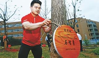 奥运冠军栽下冠军林