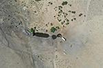 新疆帮助野生动物抗旱