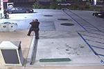 美国警方击毙一名疑似持枪男子 目击者:那只是手电筒