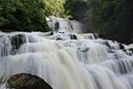 贵州毕节:米底河瀑布美如画