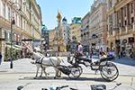 维也纳游客逐渐增多