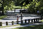 疫情之下纽约中央公园客流减少