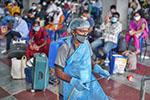 印度首都四分之一新冠检测者结果呈阳性