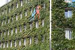 """维也纳:身披""""绿装""""的市政办公楼"""
