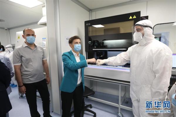塞尔维亚总理布尔纳比奇(前)与中国华大集团工作人员视频连线