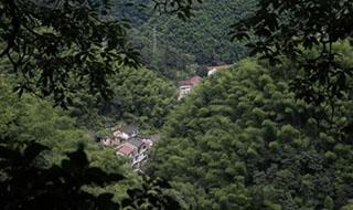 宁波这古村群山环抱 更以水碓年糕出名……