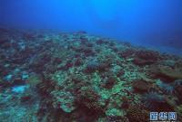 中沙群岛综合科学考察项目2020年度综合航次任务完成