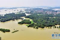 印度比哈尔邦洪水泛滥