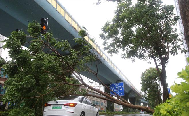"""台风""""米克拉""""登陆福建"""