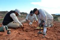 阿根廷古生物学家复原2亿多年前乌龟化石
