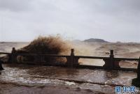 """台风""""海高斯""""登陆广东珠海"""