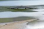 一年只约一次!鄞州磬裁桥从水下现身了