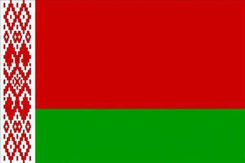 白俄罗斯总统:可能在宪法改革后提前举行总统选举