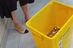 女子离职收到6千元硬币补偿金:将追究企业诽谤责任