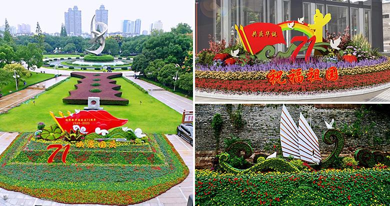 花卉景观扮靓甬城