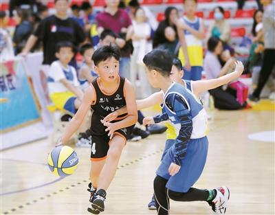 小篮球 大梦想-新闻中心-中国宁波网
