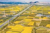 中国高端新能源汽车市场震荡 特斯拉新车价格频降