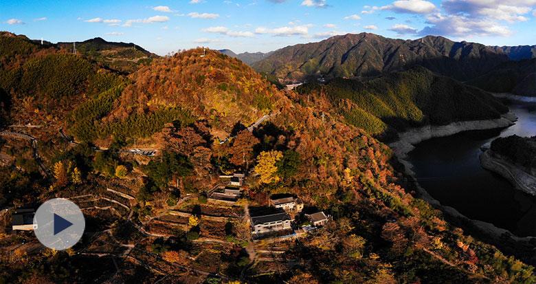 茅镬古村 最美的一抹秋意
