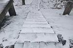 宁波下雪了!