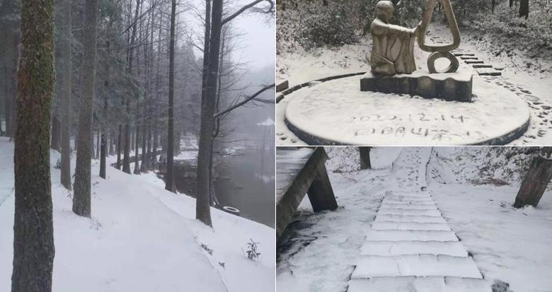 宁波四明山下雪啦!
