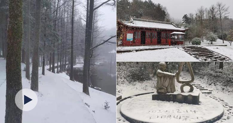 奉化山区、四明山都下雪啦!