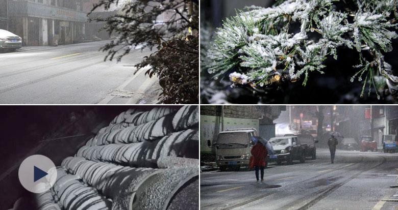 寒潮来袭 宁波下雪了