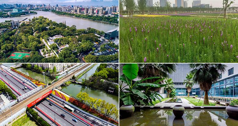 宁波7个公园、7条道路、12个居住区(单位)荣膺省级荣誉