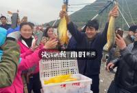 到底有多野?奉化渔民那网价值百万的大黄鱼基因测序出结果了