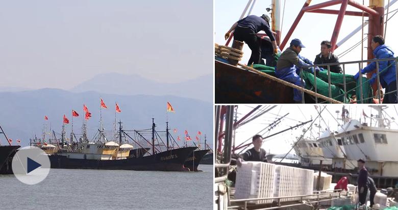 800余艘外海渔船起航 牛年第一批东海渔获4天后到港