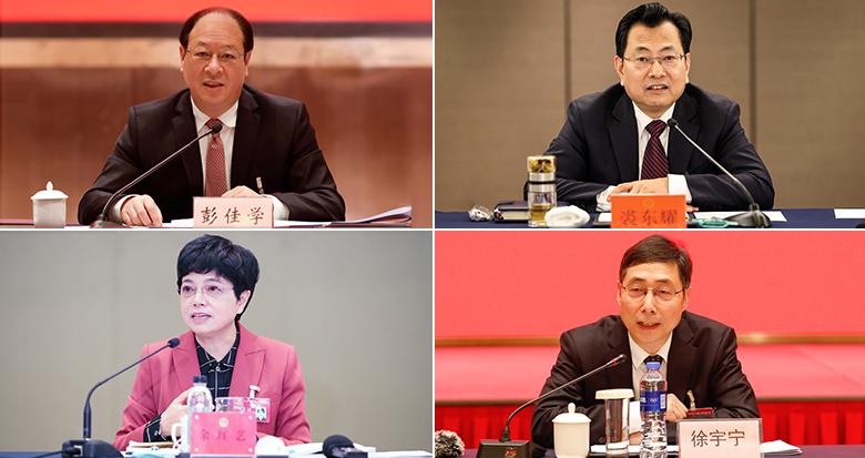彭佳学裘东耀余红艺徐宇宁参加代表团审议