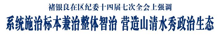 褚银良在区纪委十四届七次全会上强调 系统施治标本兼治整体智治 营造山清水秀政治生态