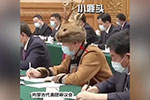 """人大代表的""""小鹿帽""""萌翻全网 其实不简单"""
