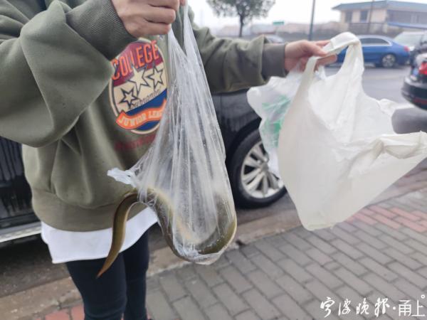一个塑料袋竟值5块钱龙八国际?来看看余姚鲁女士买菜遭