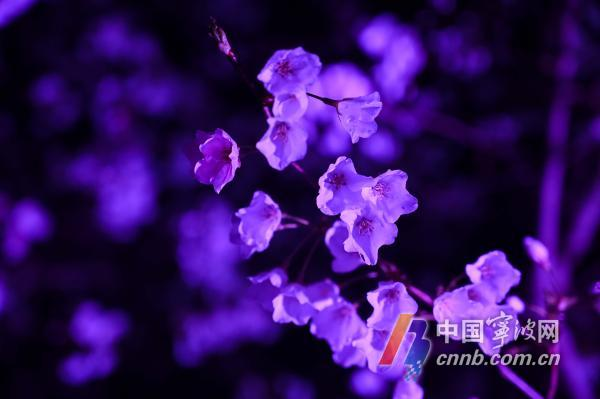 微信图片_20210320183250.jpg